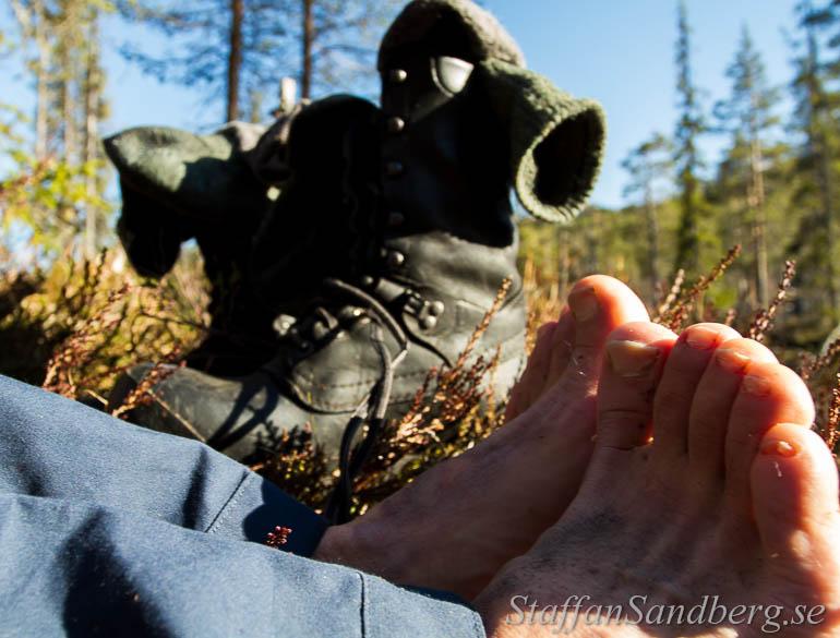 steinfjellet-skor
