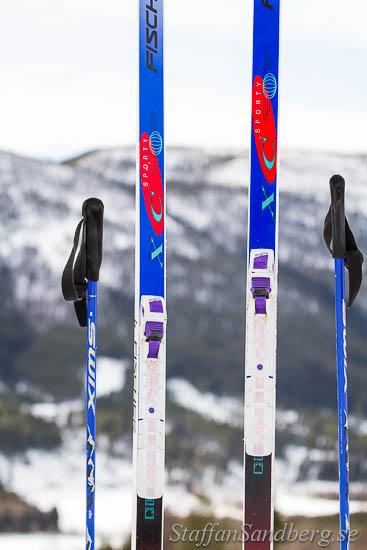 Skidor och bindningar