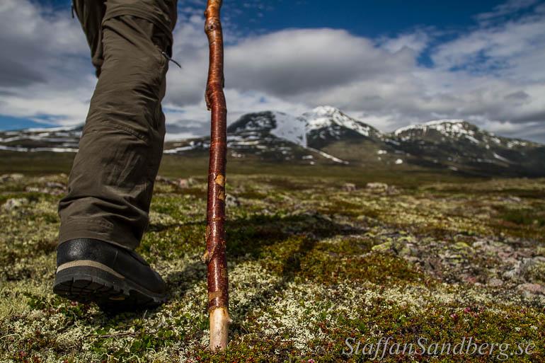 Vandring med vandringsstav