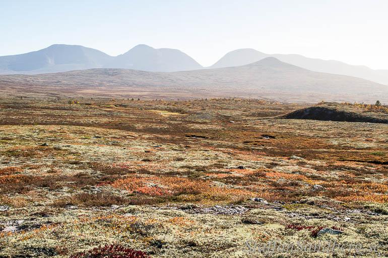 Landskapsbild en solig dag utan polarisationsfilter.