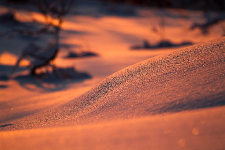 Snö i solnedgång