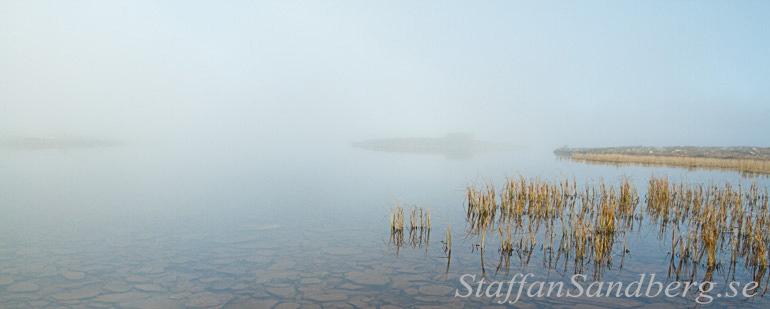 Dimma på sjö