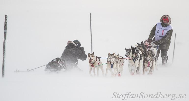 Fotografering av hundspann