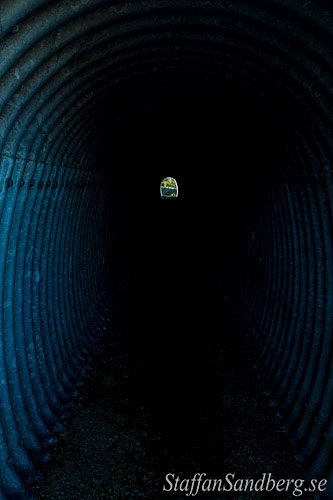 Vilttunnel
