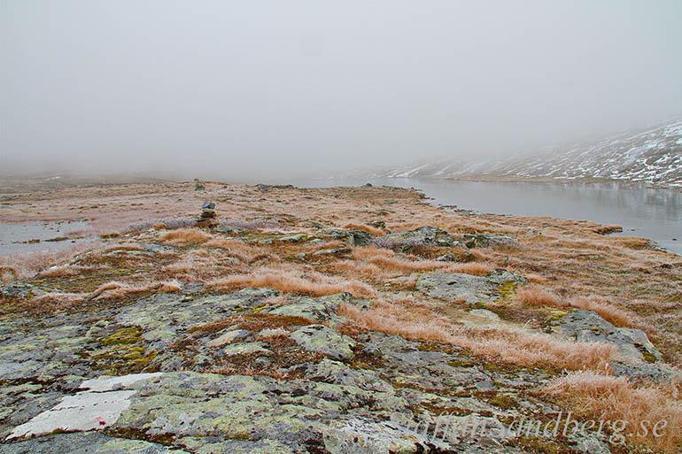 Frostigt landskap
