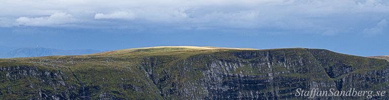 Bergskam