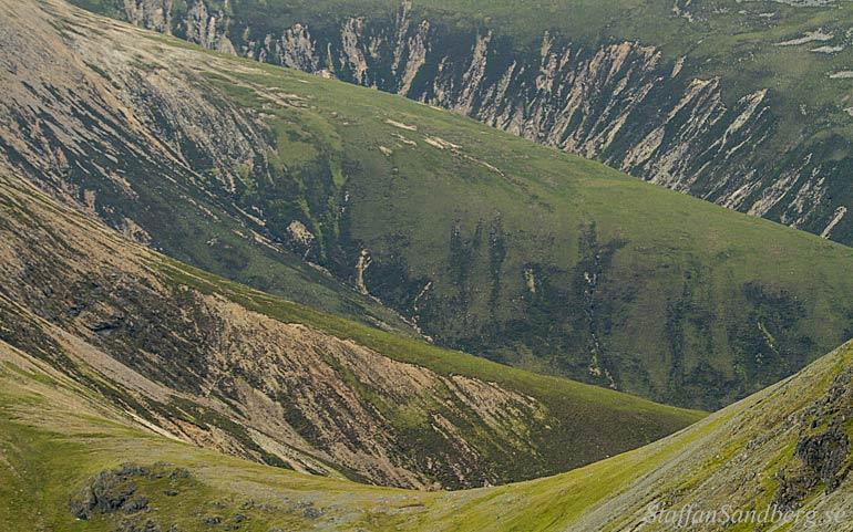 Bergssida